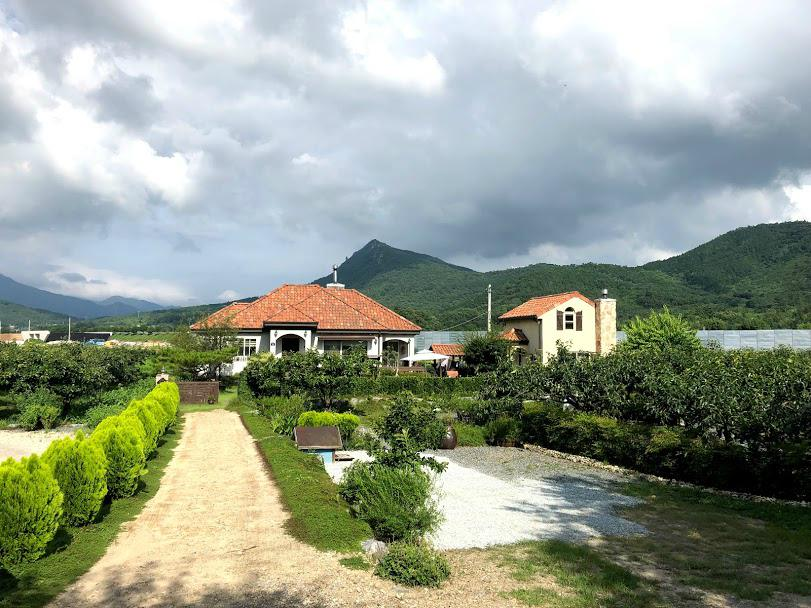 Airbnb in Jangheung
