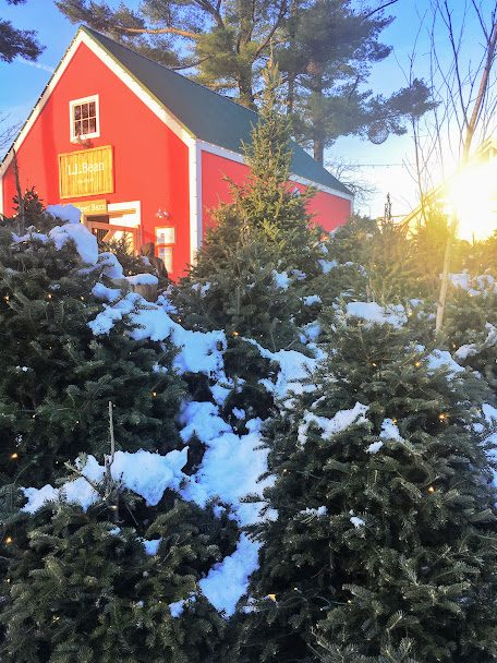 Freeport, Maine at Christmas