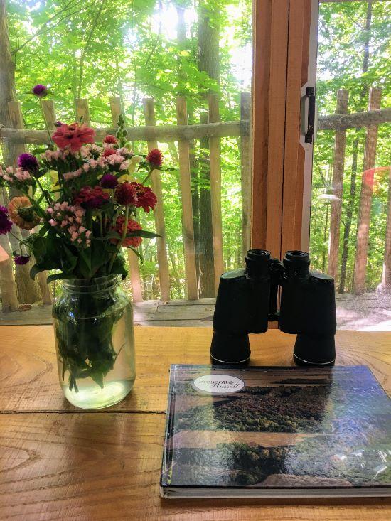 binoculars at Airbnb in plantagenet, ontario