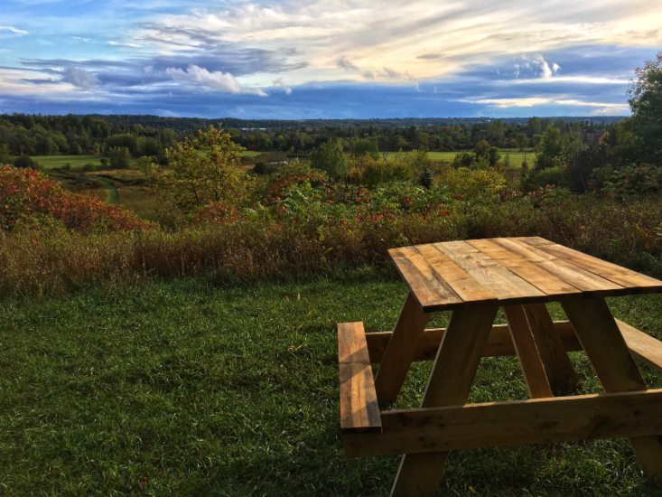 picnic table at Airbnb in Ontario, canada