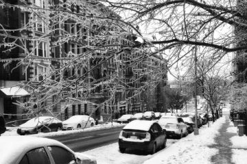 You don't want to drive your rental car around NYC in the snow