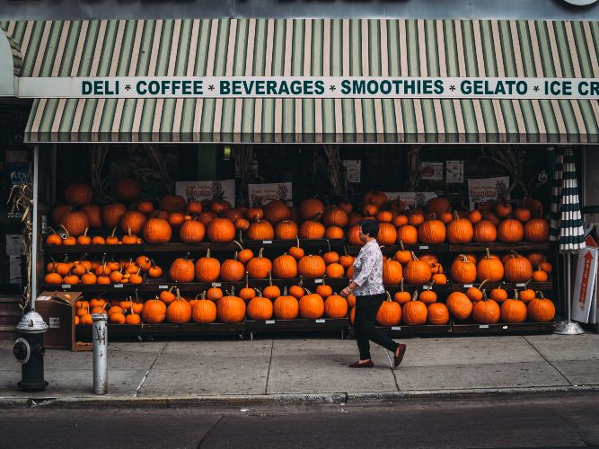 pumpkins for sale in nyc